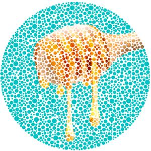HoneySpoon